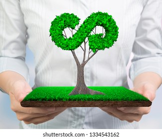 Concept of supply or development for circular economy and green friendly technology, woman hands holding tree with leaves in arrow infinity recycling shape on meadow with mud, front view.