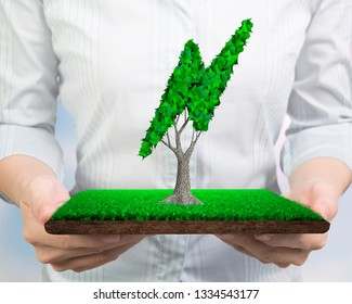 Concept for supply or development of green energy generation, woman hands holding a turf tile with tree and green leaves in lightning bolt shape, front view.