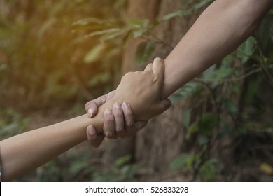 Concept of support - man and woman holding hands in the nature