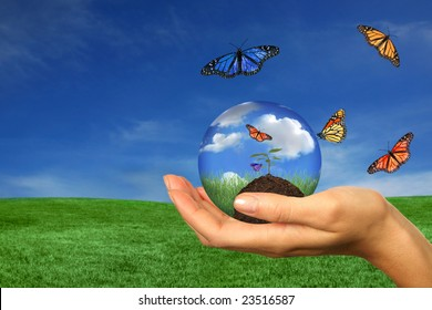 Concept of Taking Care of the Earth With Woman Holding Seedling While Butterflies Fly About