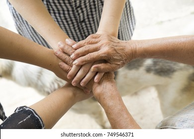 Concept of teamwork, aging society Close-Up business team or family hand showing unity with putting hands together, senior wrinkled hard working hand of old woman place on top of other young people.