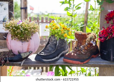 Concept of urban gardening and upcycling