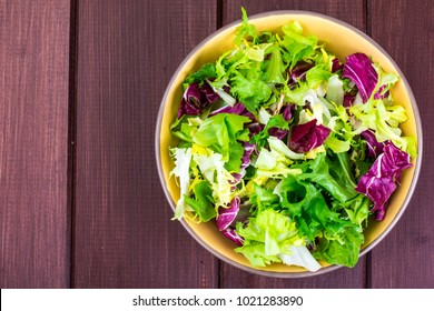 Concept of vegetarian diet. Fresh leaves of different salads. Studio Photo