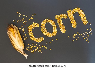 Concept of the word corn in english language formed with dry corn seeds on black background and decorated with golden corn cobs and dry corn seeds