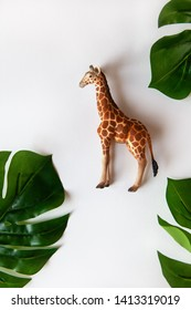 Concept of World giraffe protection day. Little toy realistic giraffe cub in center of frame, green monstera leaves around edges. White background, close-up, top view