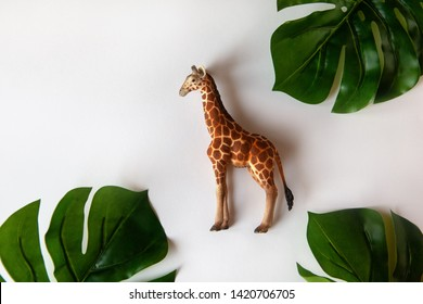 Concept of World giraffe protection day. Little toy realistic giraffe cub in center of frame, green monstera leaves around edges. White background, close-up, top view. Horizontal.