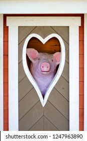 Concepts and symbols: funny pink piglet looking out the heart-shaped window