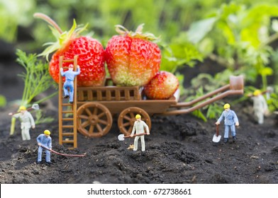 A conceptual agricultural photo with working toy people. Selective focus.