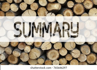 Conceptual announcement text caption inspiration showing Summary Business concept for Brief Review Business Overview written on wooden background with space
