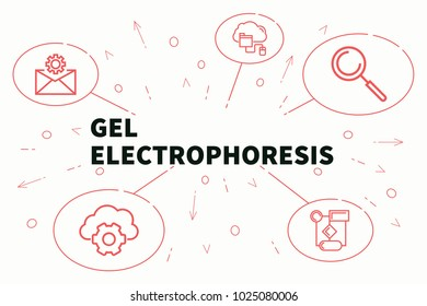 Conceptual business illustration with the words gel electrophoresis