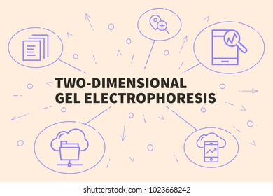 Conceptual business illustration with the words two-dimensional gel electrophoresis