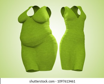 Conceptual fat overweight obese female dress outfit vs slim fit healthy body after weight loss or diet thin young woman on green. A fitness, nutrition or fatness obesity health shape 3D illustration