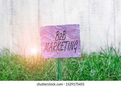 Conceptual hand writing showing B2B Marketing. Business photo text Partnership Companies Supply Chain Merger Leads Resell Plain paper attached to stick and placed in the grassy land.