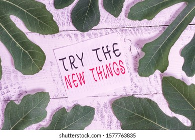 Conceptual hand writing showing Try The New Things. Business photo showcasing Breaks up Life Routine Learn some Innovative Skills Leaves surrounding notepaper above a classic wooden table.