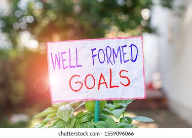 Conceptual hand writing showing Well Formed Goals. Business photo showcasing Inner Coaching Straight forward objectives or target Plain paper attached to stick and placed in the grassy land.