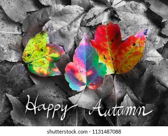 Conceptual image of Autumn with colorful autumn leaves. With Happy Autumn handwriting.