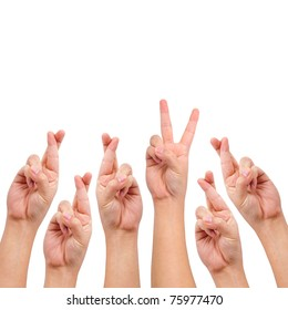 conceptual image, finger crossed and victory hand sign isolated on white with a copy space