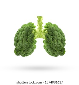Conceptual image of green broccoli  shaped like human lungs, Green broccoli shaped in human lungs. Conceptual image,Human lungs. Respiratory system. Healthy lungs. Light in the form of a  vegetable