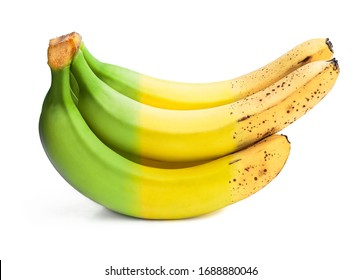 Conceptual  image of half ripe banana bunch showing different stages  - Shutterstock ID 1688880046