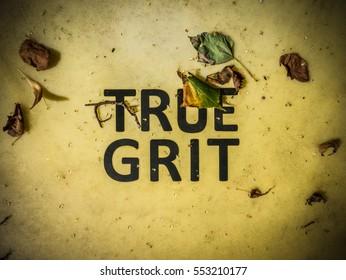 Conceptual Image Of True Grit Written On A Grit Bin
