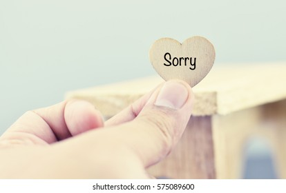 conceptual image,romantic look hand holding heart made from wood with word SORRY over blurred and selective focus background