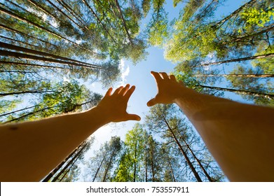 Conceptual photgraphy. Male hands reaching up sky.  Unrecognizable person praying. Unknown man begging heaven. Hope and faith idea. Foto from below. Wide angle lense distortion