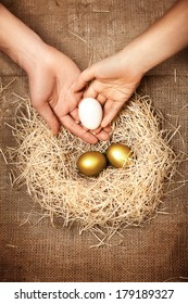 Conceptual photo of men and women hands putting white egg to nest with two golden eggs