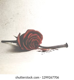 Conceptual photo of a struck and pierced love