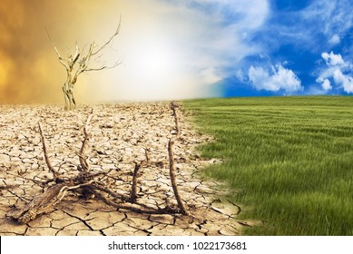 conceptual scene: metamorphosis of our planet, transition from a green environment to the hostile and arid climate due to climate change