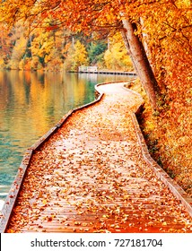 Conceptual scenery - Road inside Autumn. Amazing seasonal autumnal landscape of promenade path along Bled lake bank in Slovenia. Bled is famous and popular travel destination for romantic couples.