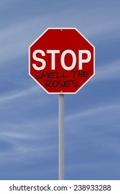 Conceptual stop sign with an idiomatic expression or saying