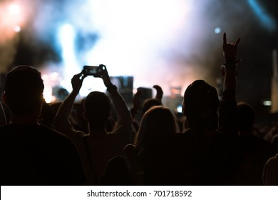 Concert visitors, Festival visitors