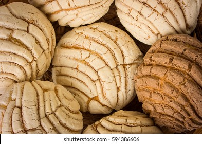 Conchas sweet bread traditional bakery of Mexico