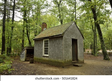 CONCORD, MASSACHUSETTS, USA - OCTOBER 2, 2016. Reconstructed cabin of Henry David Thoreau in Walden Woods, with vegetation.