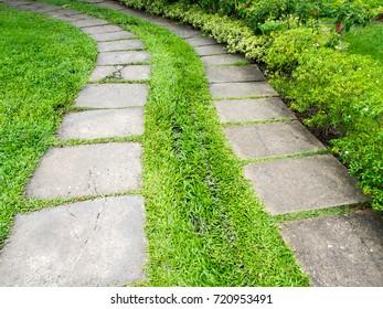 Concrete block floor walk path with green grass in the garden.