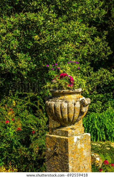 Shutterstock & Concrete Flower Pots Garden On Pedestal Stock Photo (Edit Now) 692559418