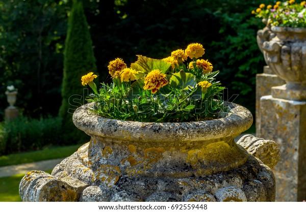 Concrete flower pots in the garden on a pedestal stylized antique, a place of rest, practical urban, flowerpot