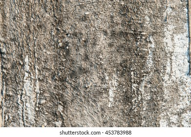 Concrete panel for background texture.