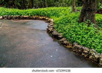 Concrete pathway with green plants in the park