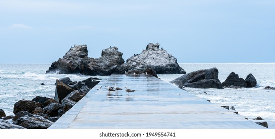 Concrete pier and rocks during storm with sea birds resting