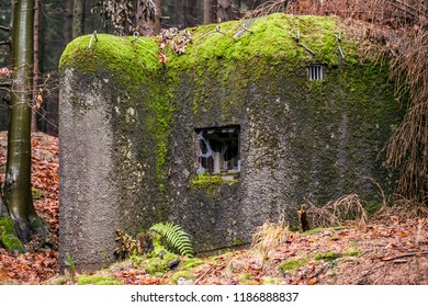 Concrete pillbox with camouflage loophole, a part of Czechoslovakian defence fortifications from 1935–1938, covered with moss standing in Eagle mountains in wet forest, Czech Republic, Europe