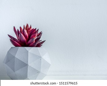 Concrete pot. Close-up red succulent plant in modern geometric concrete planter on wooden shelf isolated on white background with copy space.