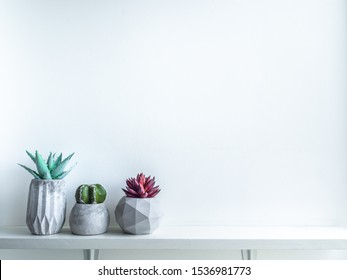Concrete pot minimal style. Cactus and succulent plant in modern geometric concrete planters on wooden white shelf isolated on white background with copy space.