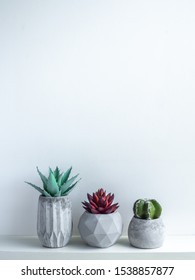 Concrete pot minimal style. Cactus and succulent plant in modern geometric concrete planters on wooden white shelf isolated on white background with copy space vertical style.