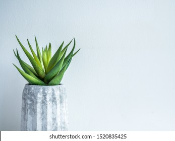 Concrete pot minimal style. Close-up green succulent plant in modern geometric concrete planter on wooden shelf isolated on white background with copy space.