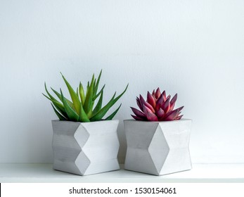 Concrete pot minimal style. Green and red succulent plant in modern geometric concrete planters on wooden white shelf isolated on white background.