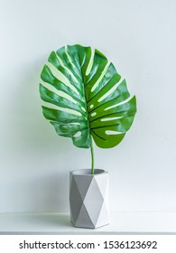 Concrete pot minimal style. Green tropical palm leaf in modern geometric concrete planters on wooden white shelf isolated on white background vetrtical style.