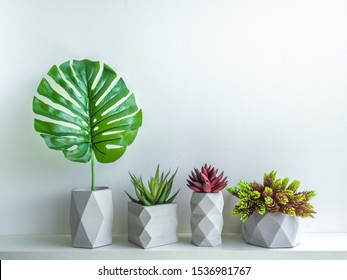Concrete pot minimal style. Green and red succulent plants and tropical palm leaf in modern geometric concrete planters on wooden white shelf isolated on white background.