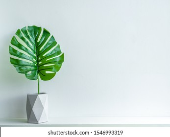 Concrete pot minimal style. Green tropical palm leaf in modern geometric concrete planters on wooden white shelf isolated on white background with copy space.