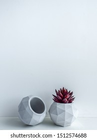 Concrete pot. Red succulent plant in modern geometric concrete planters on wooden shelf isolated on white background with copy space vertical style.